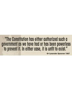 The Constitution Has Either Authorized Such a Government