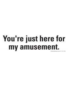 You're just here for my amusement.